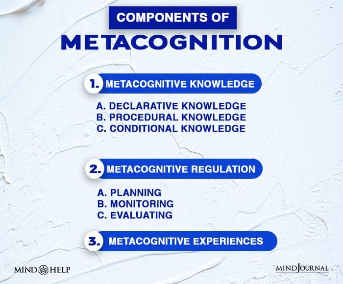 components of metacognition