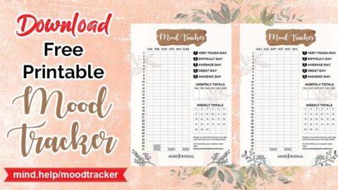 Mood Tracker Scale