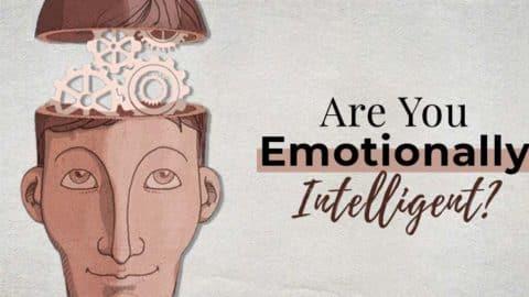 Emotional Intelligence ( EI ) Test