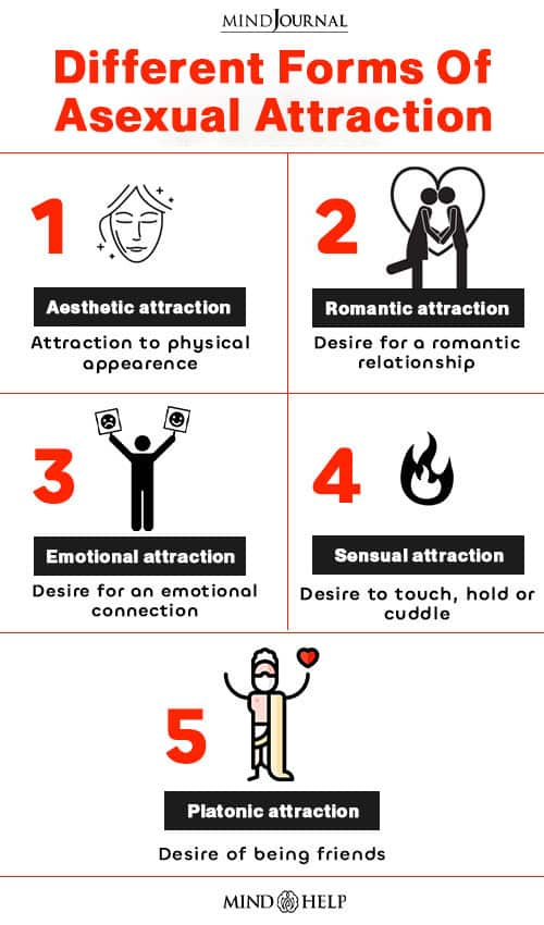forms of attractions