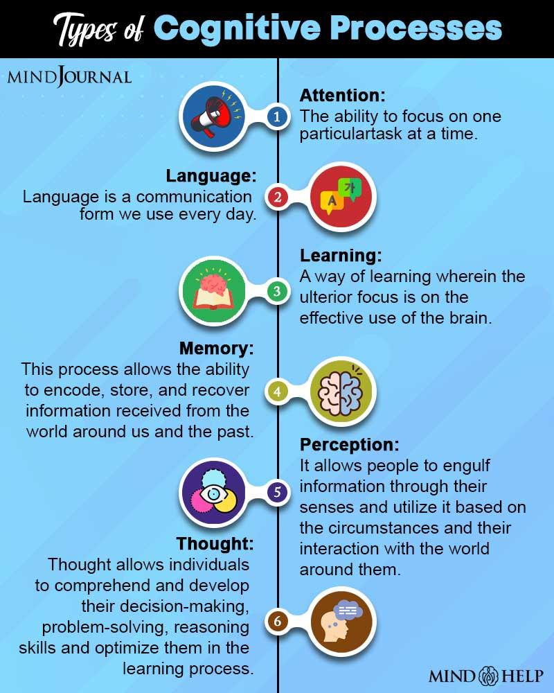 Types Of Cognitive Processes