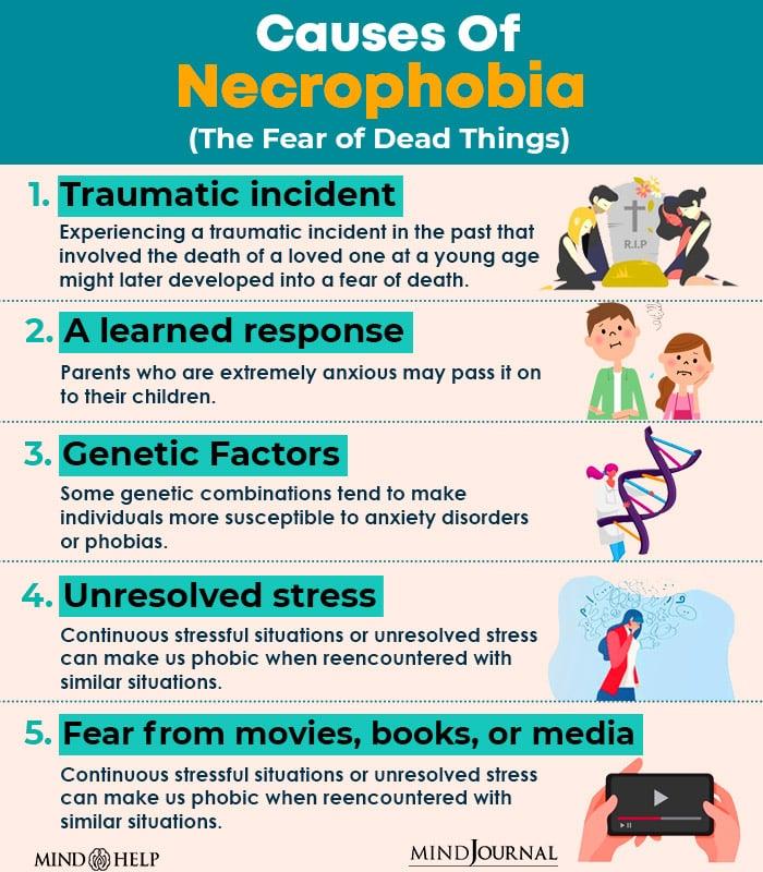 Causes Of Necrophobia
