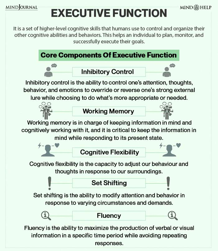 Core Components Of Executive Function